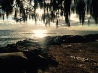 Lahaina beach: Launiupoko Beach park