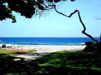 Mauna Lani beach: Holoholokai Beach