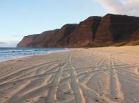 Waimea beach: Polihale State Beach Park
