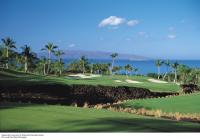 Wailea golf course: Wailea Gold Golf Course