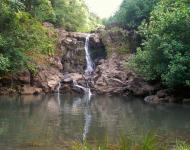Huelo hike: Bamboo Forest Huelo