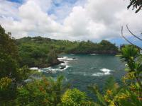 Hilo hike: Onomea Trail to Onomea Bay