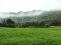 Wailua hike: Sleeping Giant