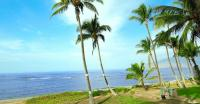 Hawaii ocean view rentals