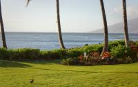 Kihei vacation rental: My Waii Beach Cottage - 1BR