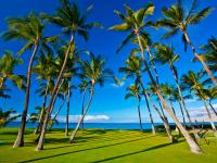 Kihei vacation homes