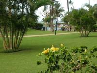 Kihei condo rental: Maui Sunset - 1BR Condo #112A